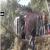 Breaking News : सोमवार सुबह सुंदरनगर में बड़ा बस हादसा, 1 की मौत 32 घायल